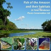 Fish of the Amazon and their Habitats